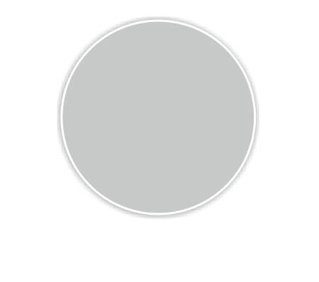 Верблюжий серый